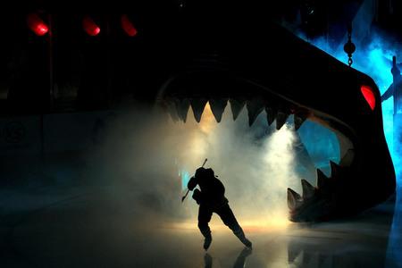 (San Jose Sharks Entrance via dirtydangle.com)